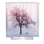 Winter Tree In Fog At Sunrise Shower Curtain by Elena Elisseeva