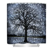 Winter Tree In Snowfall Shower Curtain