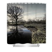 Winter Tree On The River Culm Shower Curtain