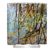 Winter Tree Reflections Shower Curtain