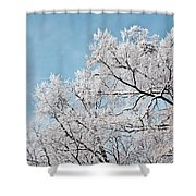 Winter Tree Scene Shower Curtain