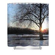 Winter Tree Sunset Shower Curtain