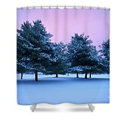 Winter Trees Shower Curtain by Brian Jannsen