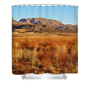 Winter Trees Landscape 1 Shower Curtain