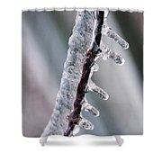 Winter Twig Shower Curtain