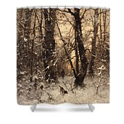 Winter Twilight Shower Curtain