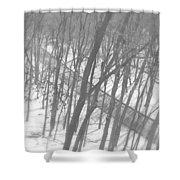 Winter Urban Wood Shower Curtain