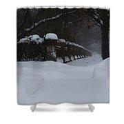 Winter Walk Shower Curtain
