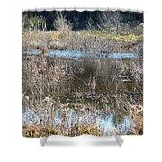 Winter Wetlands Of Alabama Shower Curtain
