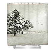 Winter White Shower Curtain by Julie Palencia