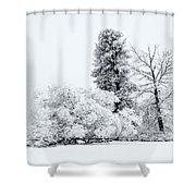 Winter White Shower Curtain