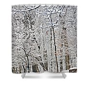 Winter White Trees Shower Curtain