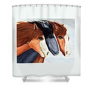 Horse Trio Shower Curtain