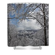 Winter Window Wonder Shower Curtain