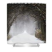 Winter Wonder Snow Tunnel Of Trees Shower Curtain