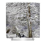 Winter Wonderland 9 Shower Curtain