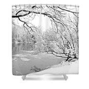 Winter Wonderland In Black And White Shower Curtain
