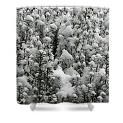 Winter Wonderland Shower Curtain