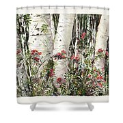 Winter Wood Jpg Shower Curtain