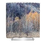 Winter Woodland  Shower Curtain