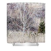 Winter Woodland With Subdued Colors Shower Curtain