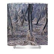 Winter Woods In Missouri 1 Shower Curtain