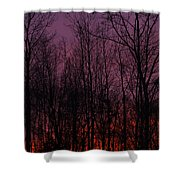 Winter Woods Sunset Shower Curtain