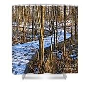Winter Woods Walk Shower Curtain