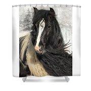 Winter Woolies Shower Curtain