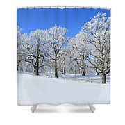 Winter's Best Shower Curtain