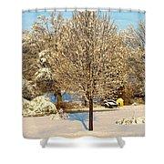 Winters Bradford Pear Shower Curtain