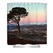 Winter's Dawn Shower Curtain