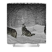 Winters Eve Howling Shower Curtain