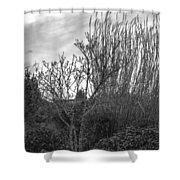 Winters Garden Shower Curtain