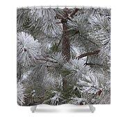Winter's Gift Shower Curtain