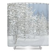 Winter's Glory - Grand Tetons Shower Curtain by Sandra Bronstein