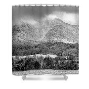 Winters Grace Shower Curtain