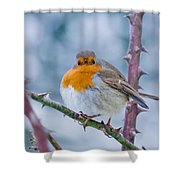 Winters Here Shower Curtain