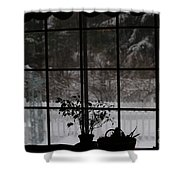 Winters Reflection Shower Curtain