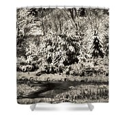 Winter's Sepia Grip Shower Curtain