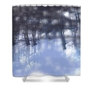 Winters' Shadow Shower Curtain