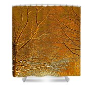 Winters Touch 2 Shower Curtain