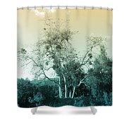 Winter's Tree Shower Curtain