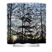 Winter's Trees At Dusk Shower Curtain