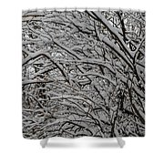 Winters Weight Shower Curtain