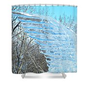 Winter's Wings Shower Curtain