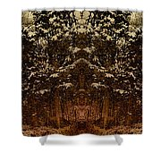Winterscape 3 Shower Curtain