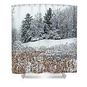 Winterscape Shower Curtain
