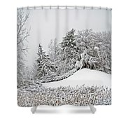 Wintery Fun Shower Curtain