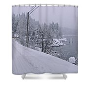 Wintery Road Shower Curtain